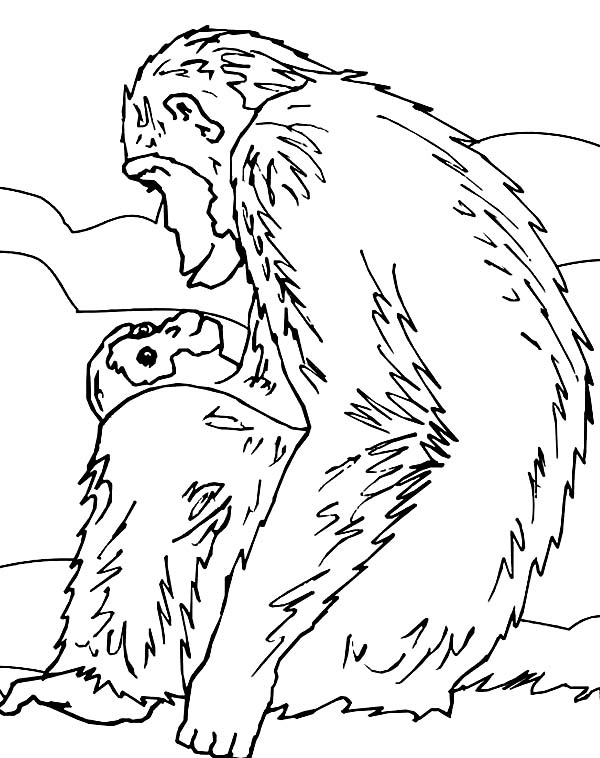 chimpanzee and her lovely baby chimpanzee coloring page coloring sun