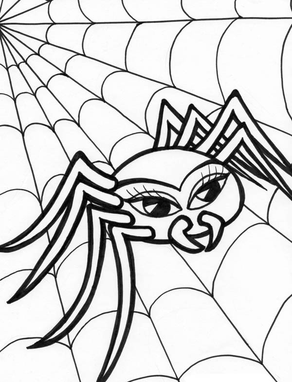 scary spider with spider web coloring page color luna