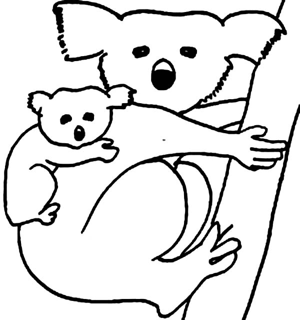 koala bear carrying her baby coloring page color luna