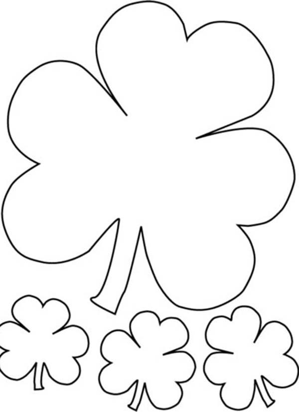 the irish called three leaf clover as shamrock coloring page