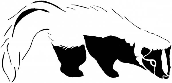skunk black and white skunk coloring page