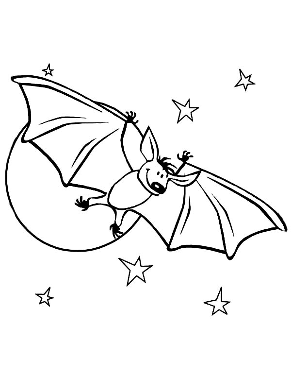 bats cute bats in starry night coloring page