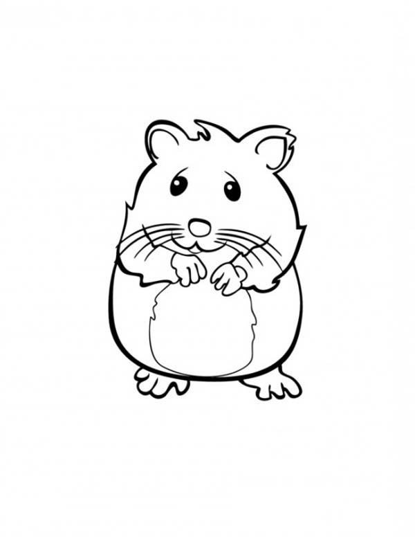 Sleeping guinea pig coloring pages - Hellokids.com | 776x600