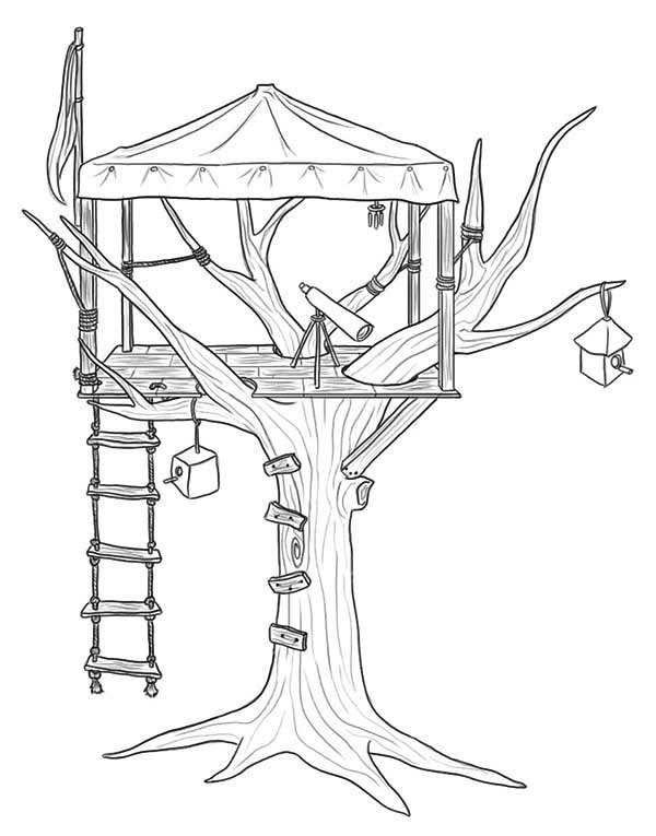 treehouse treehouse for observer coloring page