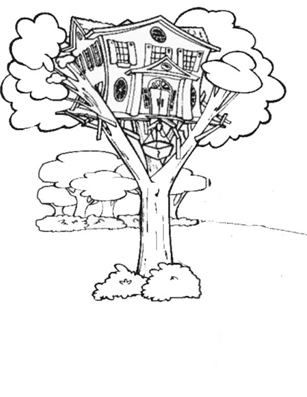 magic tree house coloring pages bigbenches kids coloring pages ideas