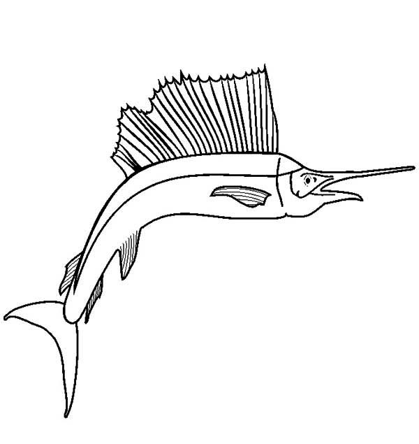 awesome drawing of sailfish