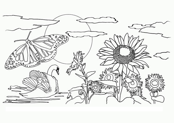 nature beautiful view of nature coloring page