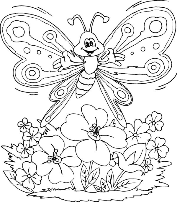 butterfly and flower of page