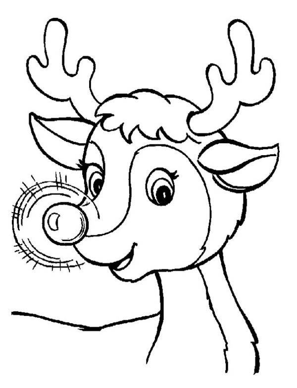 sweet christmas reindeer with glowing nose on christmas page