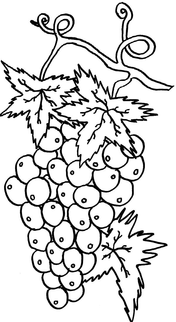 free printable coloring pages part 6