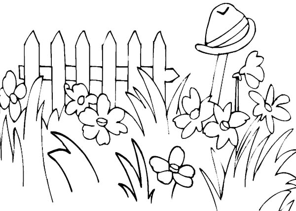 garden full of tall grass coloring pages color luna