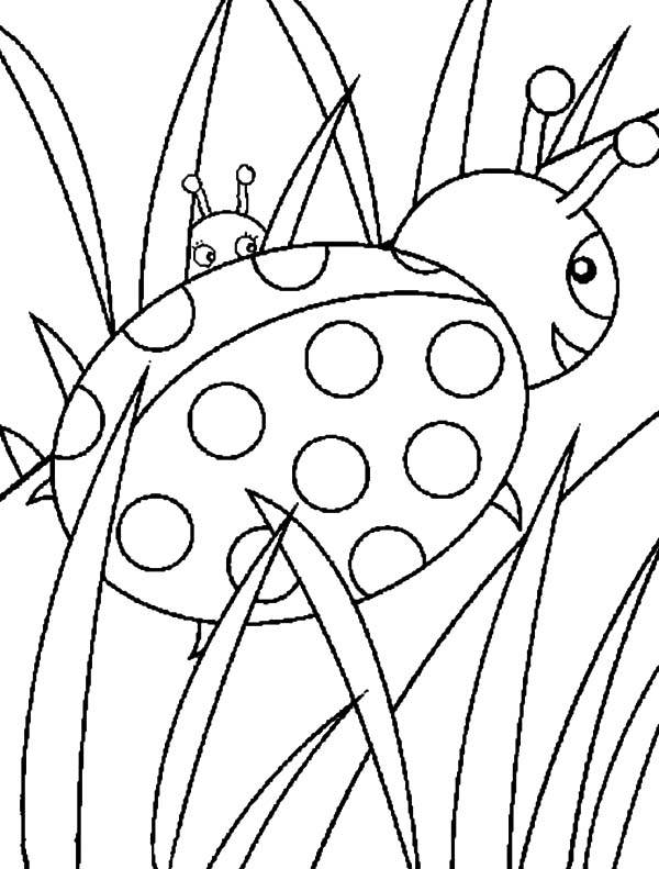drawing grass coloring pages color luna