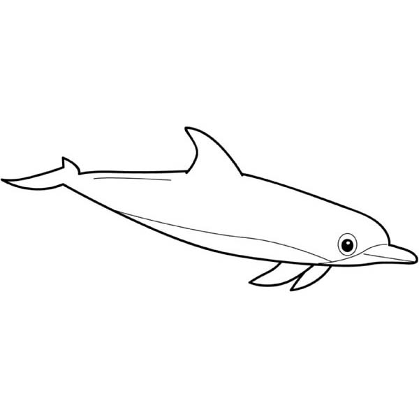 Cute Dolphins Coloring Pages Cartoon Dolphin Coloring Pages Cute