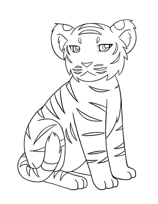 a little tiger cub not in a good mood today coloring page