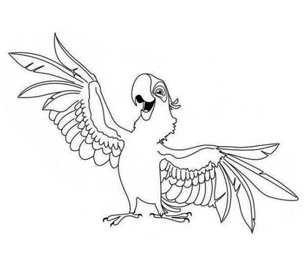 parrot aladeen parrot coloring page