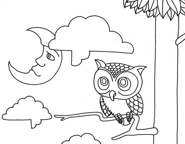 moon and owl coloring page download amp print online coloring