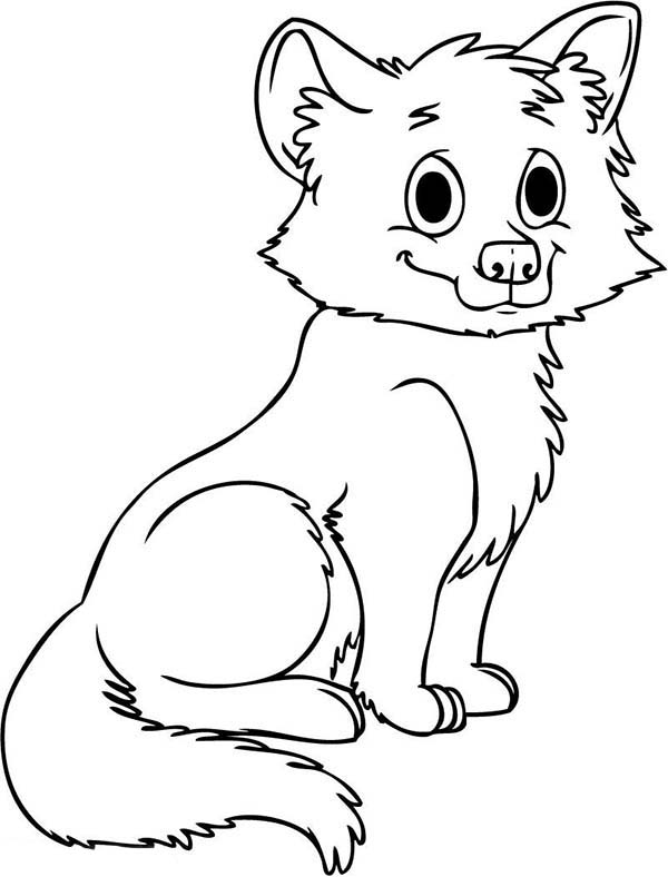 cute baby wolf coloring page download amp print online coloring