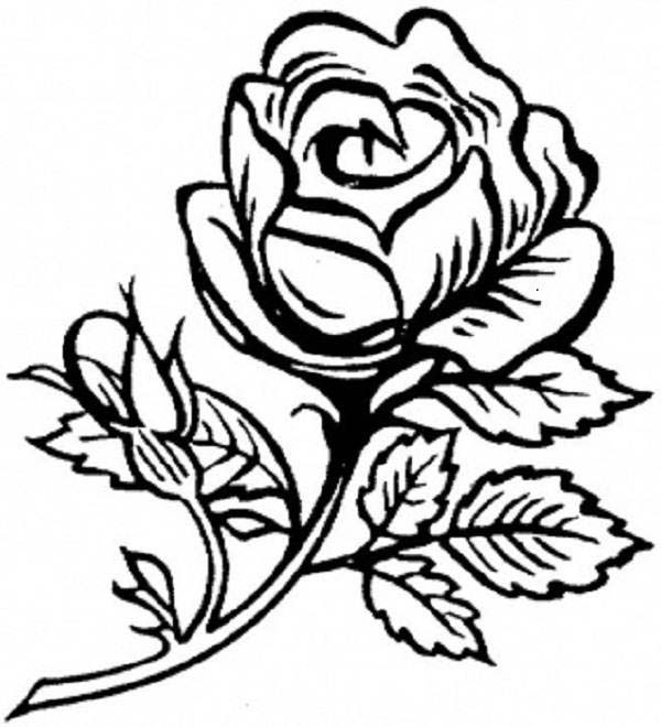 is beautiful flower coloring page download amp print online coloring