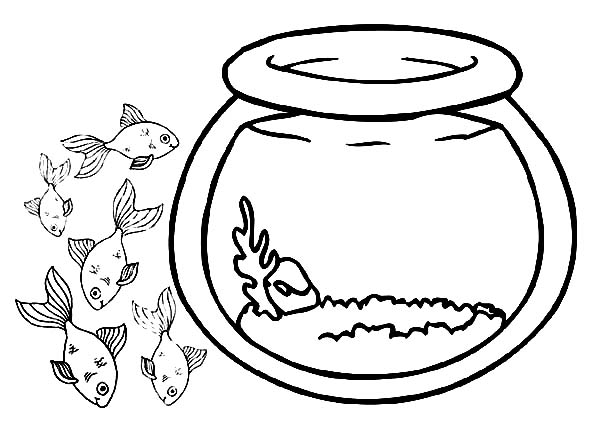 fish bowl school of fish outside fish bowl coloring page