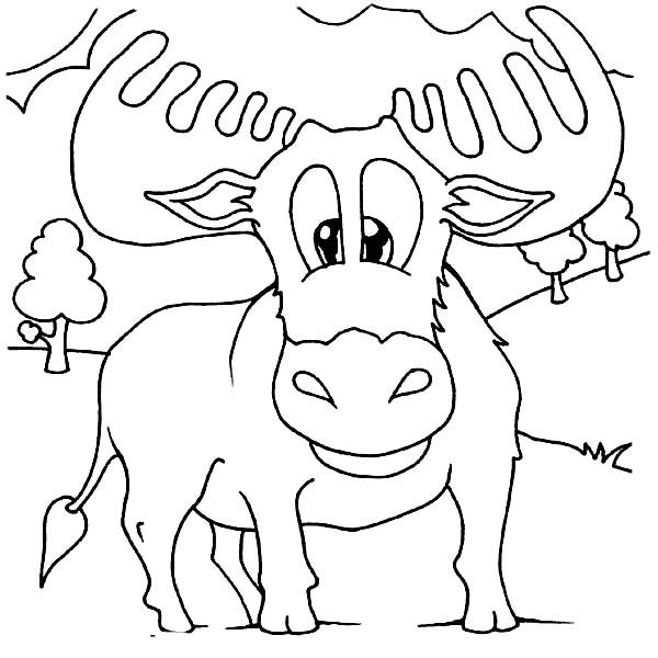 cute baby moose coloring page download amp print online coloring