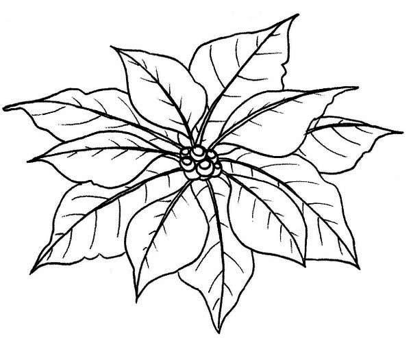 Poinsettia Leaf Template