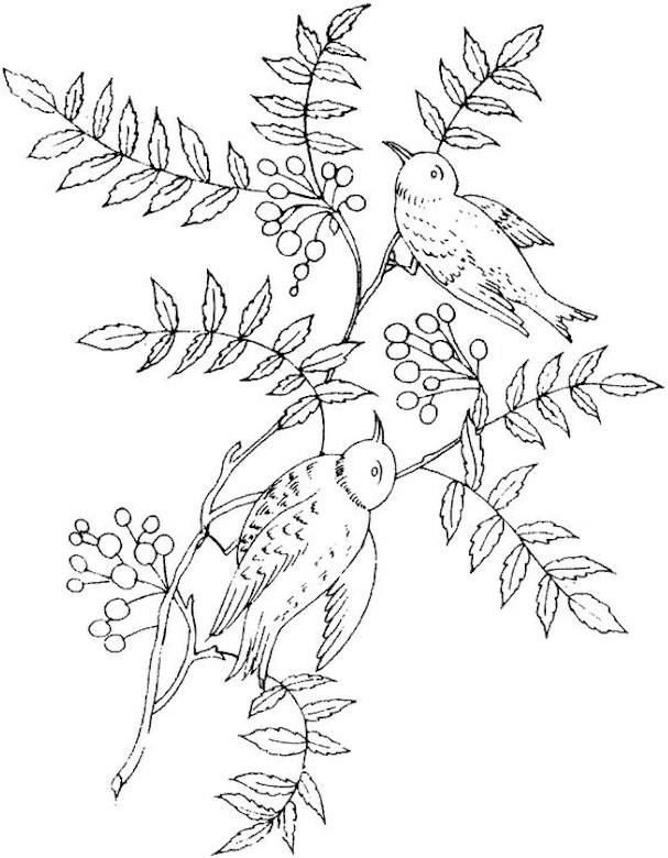 鳥 ぬりえ : 大人も楽しめる!細かい絵イラストのぬりえ(塗り絵)【無料