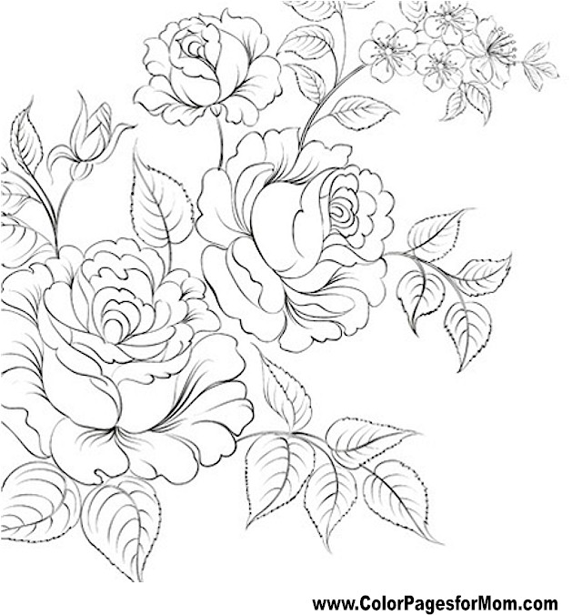 coloring pages on pinterest flower coloring pages mandala coloring