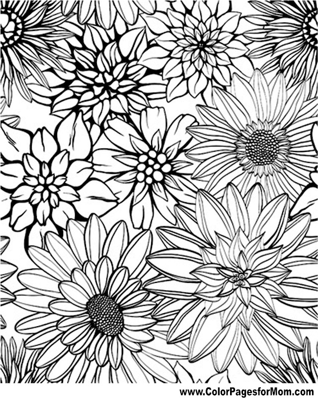 adult coloring coloring book coloring zen flower coloring pages