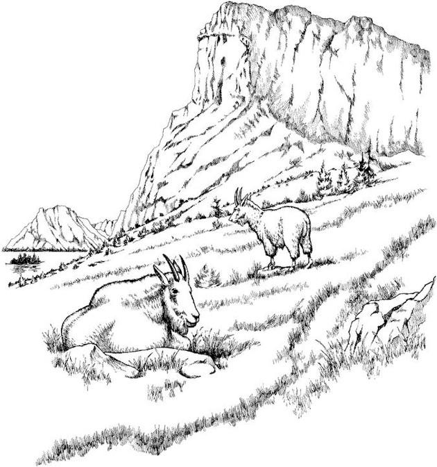 Mountain Landscape Coloring Pages. free desert landscape ...