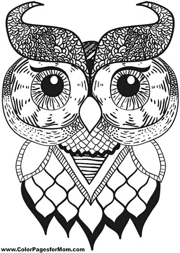 owl coloring pages adult additionally owl coloring pages kids as well
