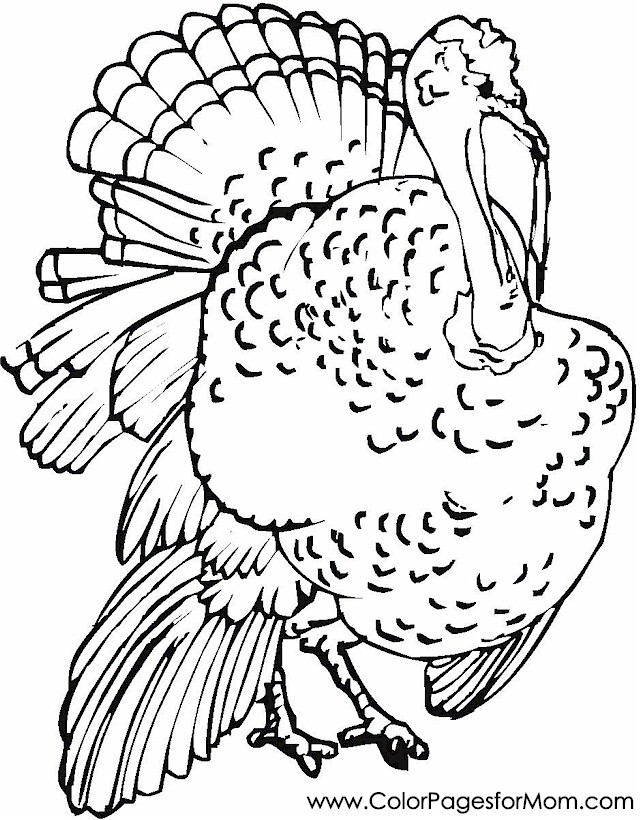 thankgsiving coloring page 5