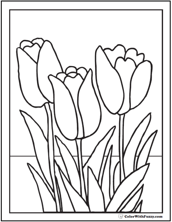 tulip flower coloring pages 14 pdf printables