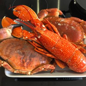 Lobster and Crabs