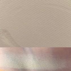DESERTED - Colourpop Garden Variety Palette