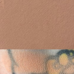 TOP DOWN - Colourpop Wild Nothing Palette