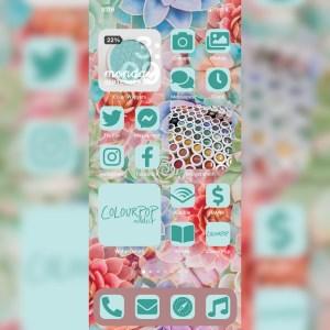 Colourpop Garden Variety iPhone iOS 14 customized home screen