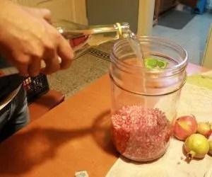 il liquore al melograno-alcol e semi
