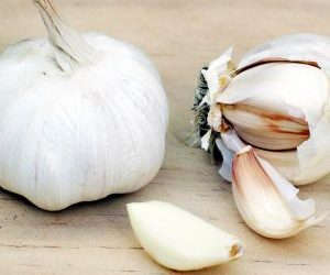coltivazione aglio-bulbilli