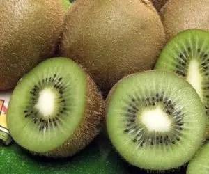 Polpa del kiwi