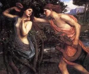 liquore di alloro leggenda di Apollo e Dafne