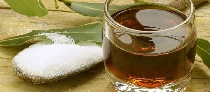 Liquore di alloro e pianta di lauro