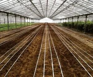 Manichette per l irrigazione dell orto
