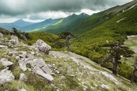 Crinale ovest di Serra delle Ciavole. Dietro Cresta dell'infinito e Manfriana (Parco Nazionale del Pollino)