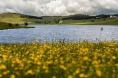 Lago Ariamacine (Parco Nazionale della Sila)