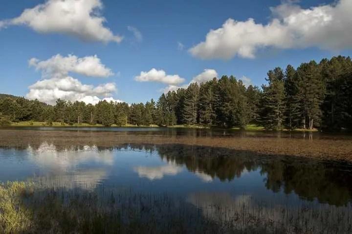 Lago Macchialonga Parco Nazionale della Sila