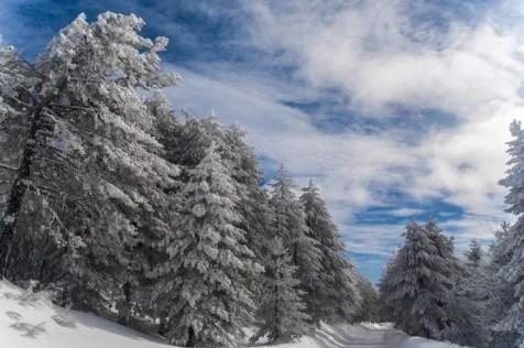Montescuro Parco Nazionale della Sila