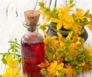La Pianta Di Iperico Antidepressivo Naturale E Tutte Le