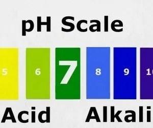 Tabella pH del terreno