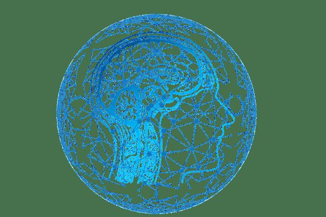 selective focus brain