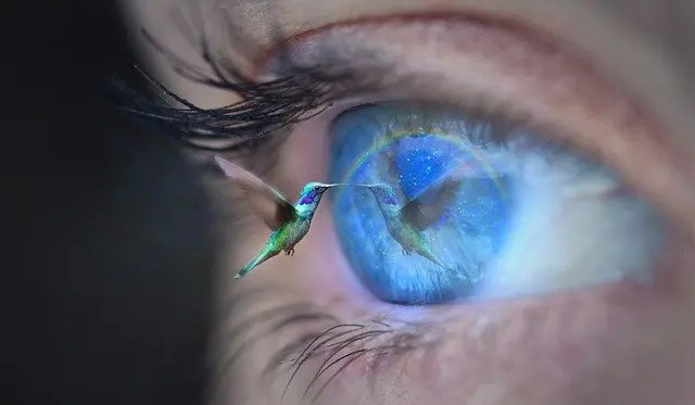 Experimental Innovation: Are You Using A Bird's Eye View Or A Worm's EyeView?